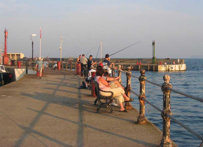 Fishing guide to princess pier torquay devon for Pier fishing tips